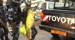 Kuhusu wengine tena walioandamana na Nguruwe Kampala