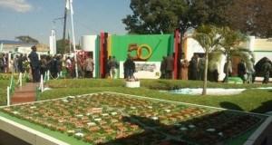 Zambia yaadhimisha miaka 50 ya uhuru bila uwepo wa Rais Sata.